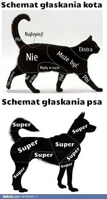 Schemat głaskania kota i psa