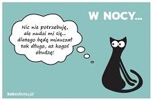 więcej na kotwdomu.pl