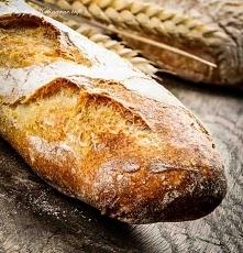 Pszenny chleb
