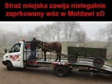 odholowanie pojazdu przez straż miejską