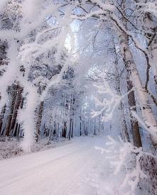 Śnieżna Finlandia
