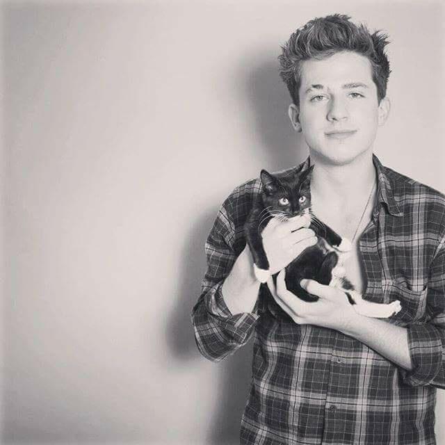 kocham koty, kocham Charliego *_* #best