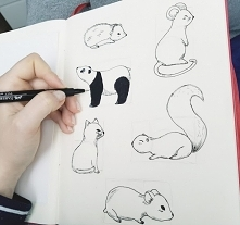 Czas na doodle