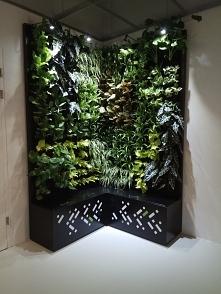 Zielona ściana  facebook:   /ProjektZielenWroclaw/   Wykonujemy zielone ściany. Jak Wam się podoba?