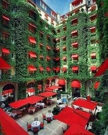Paris hotel (^__^)♥♥♥