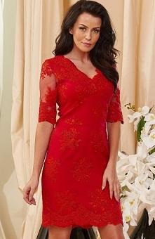 Roco 0153 sukienka czerwona Koronkowa sukienka, model dopasowany do ciała, seksowny dekolt