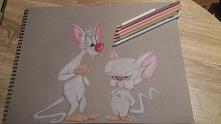 Pinky i Mózg ;)   Jak ja i moja przyjaciółka ;) oczywiście to JA jestem mózgi...