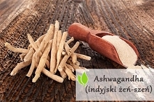 Ashwagandha czyli indyjski ...