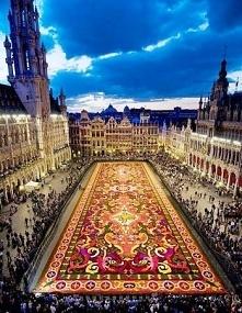 Bruksela Belgia