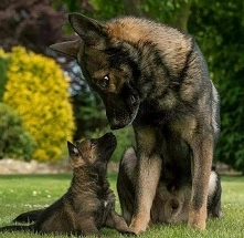 Dad and son ♥♥♥