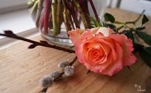 Bukiet wiosenny z róż i bazie
