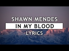 Shawn Mendes - In My Blood ...