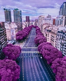 Buenos Aires, Argentyna