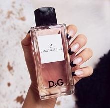 Wszystko co musisz wiedzieć o perfumach