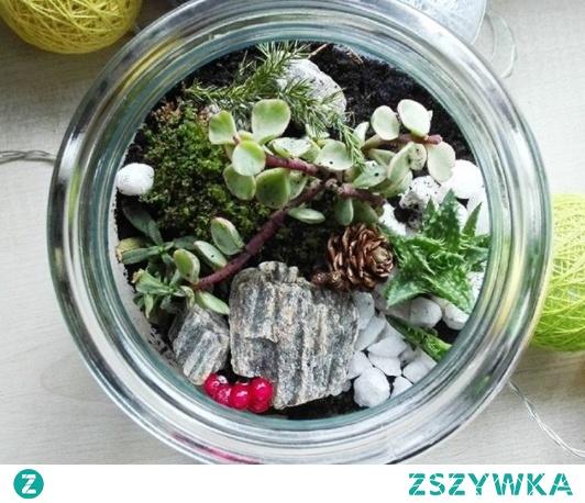 mini garden :3