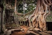 Świątynia Angkor Wat - Kambodża