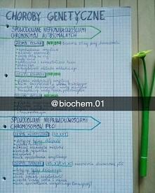 Zapraszam na Instagrama @biochem.01