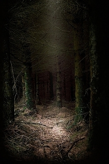 The Dark Place autor: tommy...