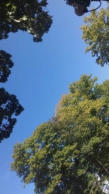 #sky #Mielno