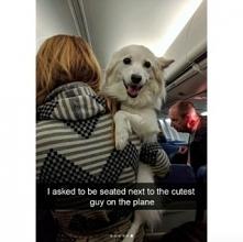 Pasażer :D <3