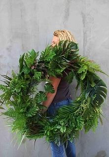 wieniec Monstera - tendom - sklep internetowy i pracownia florystyczna