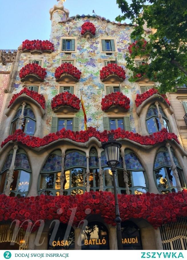 W związku z dniem dzisiejszym 23 04 w Dzień celebracji, w którym róże i książki stają się bohaterami Życzę Wam dużo MILOŚCI I OGROMU PRZECZYTANYCH KSIĄŻEK❤ Festiwal Sant Jordi to dzień, który świętowany jest z wielkim entuzjazmem i radością w Katalonii. Ulice miasta pełne są ludzi i straganów sprzedających książki i róże. Chodzi o świętowanie święta patrona Katalonii i zapamiętywanie tej tradycji opartej na miłości i kulturze♡ po krotce-Legenda wyjaśnia,że dawno temu,w Montblanc dziki smok,który zatruwal powietrze i zabijał swoim oddechem,terroryzował mieszkańców miasta.Mieszkańcy,wystraszeni i zmęczeni spustoszeniami i złymi uczynkami,postanowili go uspokoić,karmiąc1 osobą na dzień, wybraną losowo Po kilku dniach pech przypadł księżniczce.Kiedy ta opuściła dom i udała się do smoka,nagle rycerz o imieniu Sant Jordi,w lśniącej zbroi i białym koniu,przyszedł jej na ratunek.Sant Jordi podniósł miecz i przebił smoka ostatecznie uwalniając księżniczkę i obywateli ze rzeki krwi smoka wzrosła się róża w najpiękniejszym kolorze płatków jakie kiedykolwiek widziano.Sant Jordi triumfujący,zerwał różę i ofiarował ją księżniczce.