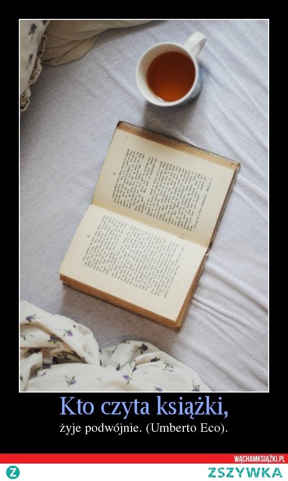 23 kwietnia - Światowy Dzień Książki i Praw Autorskich, Dzień Koni