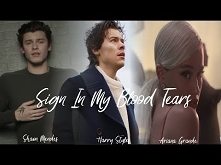 SIGN IN MY BLOOD TEARS  MASHUP feat. Shawn Mendes, Harry Styles & Ariana ...