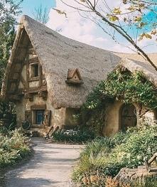 Wielki dom♥