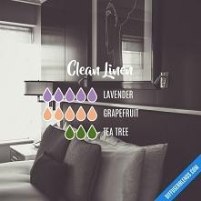 Blend Recipe: 5 drops Laven...