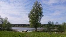 Zeliszewo