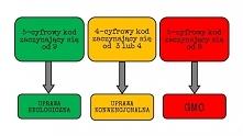 Tajemnicze kody na owocach/...
