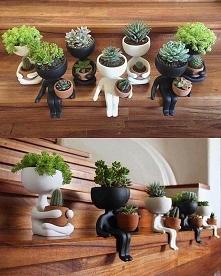 little garden <3