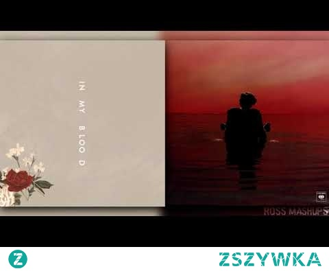 Sign In My Blood |Shawn Mendes feat. Harry Styles (MASHUP CONCEPT)