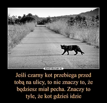 Pecha przynosi Ci, to Twoje zabobonne myślenie. Przez to myślenie, po prostu widzisz tylko negatywne zdarzenia. Ot, cała tajemnica czarnego kota.