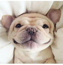 uśmiech poproszę ❤