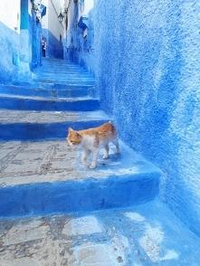 Szafszawan Maroko