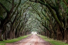 Everything you need to know for the perfect Deep South road trip, including a...