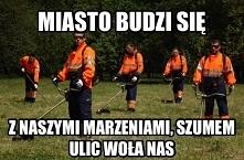 Miejskie poranki :D Nowe memy i dowcipy na pocisk.org