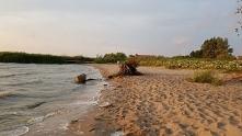 Juz nie ma dzikich plaż...