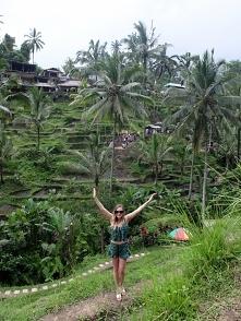 Tarasy Ryżowe w Indonezji