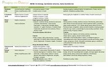 Przykładowe Menu bezmleczne dla dziecka 11 miesięcy (karmienie sztuczne)