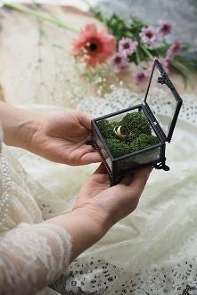 Szklana szkatułka retro -antracytowa - VINTAGE