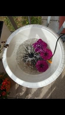 Fontanna w donicy :) szum wody- jak nad strumykiem. Wnętrze doniczki wykleję ...