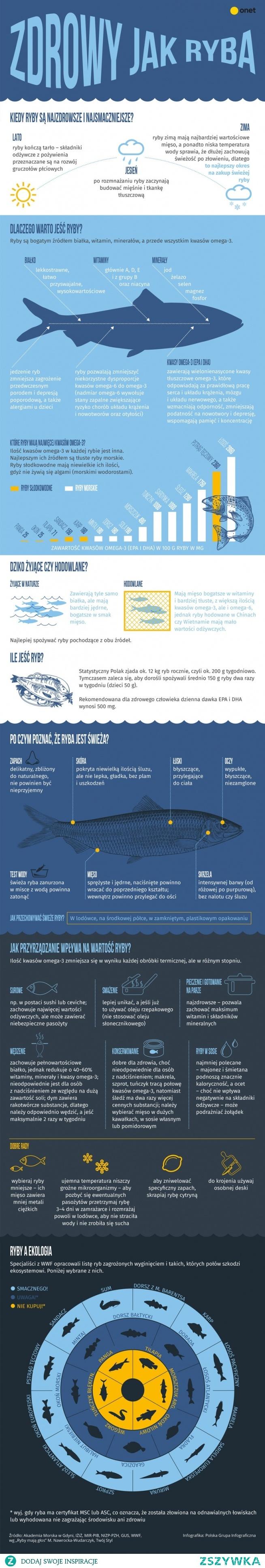 Dlaczego warto jeść ryby? [INFOGRAFIKA]