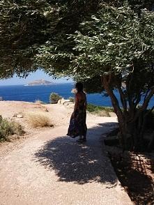 Drzewo oliwne i morza czas.