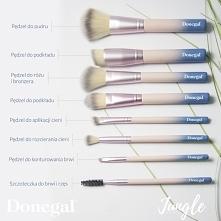 Bez którego pędzla nie wyobrażacie sobie makijażu?  Jungle by Donegal