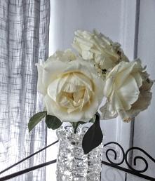 ...wstawił różę do wazonu, poszedł spać. Rano róża zwiędła na amen. O różę trzeba dbać! Miłość jak i życie - jest jak róża. Piękna, cudnie pachnąca, w wielu barwach, ale posi...