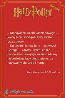 Zabawny cytat - Fred i George