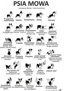 Psia Mowa